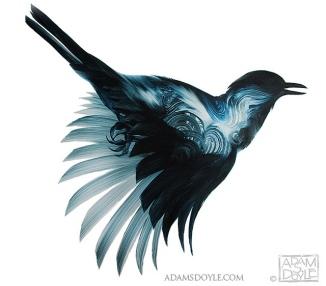 ADAM-S-DOYLE-BIRDS-3-_z
